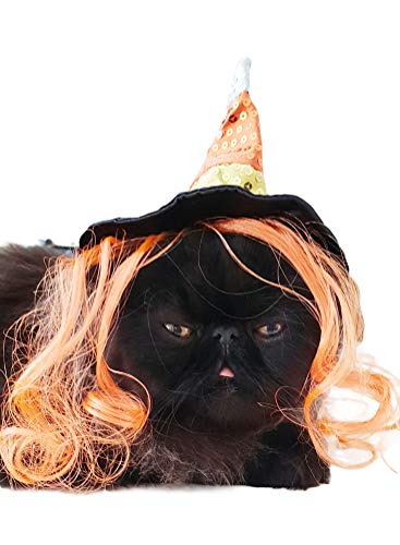 Glamour Girlz Spookachtige Hond & Kat Halloween Pailletten Oranje Zwart Heks Hoed Oranje Haar Hoed, Medium, Zwart