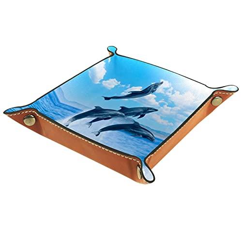LynnsGraceland Bandeja de Cuero - Organizador - Dolphins Hermoso Cielo Azul Marino - Práctica Caja de Almacenamiento para Carteras,Relojes,Llaves,Monedas,Teléfonos Celulares y Equipos de Oficina