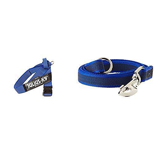 Arnés para cinturón de seguridad JULIUS-K9 y Correa para Perro, con Mango y Junta Tórica - color azul - talla: 1