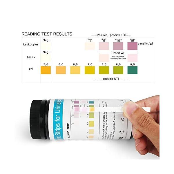 buy  LotFancy UTI Test Strips 150ct, 3-in-1 Urine Test ... Diabetes Care