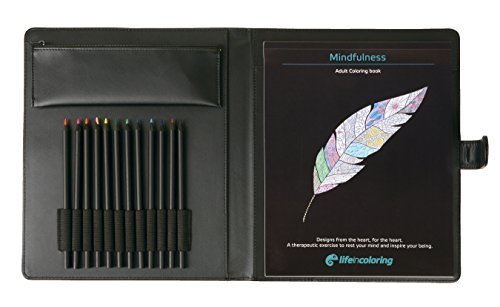 Mindfulness Coloring Book Set Adults and Teens | Elegant Portable Carrying Case with Sleek Vibrant Colored Pencils and Bag Relaxation Coloring Set on The Go for Travel or at Home.