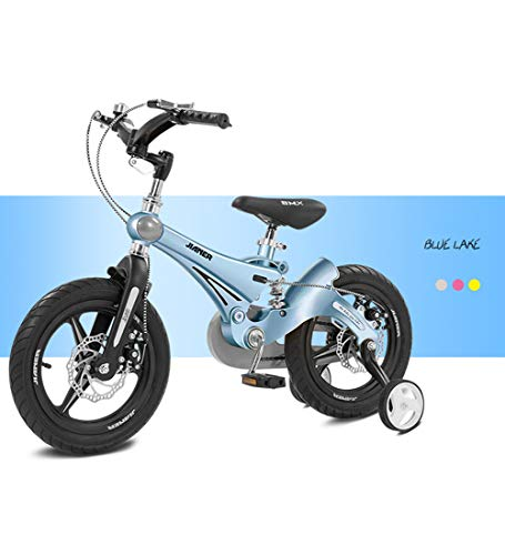 SJSF Y Bici Bicicleta Infantil niño y niña, 12/14/16 Pulgadas   A Partir de 3 años   V-Brake y Freno de Disco   14
