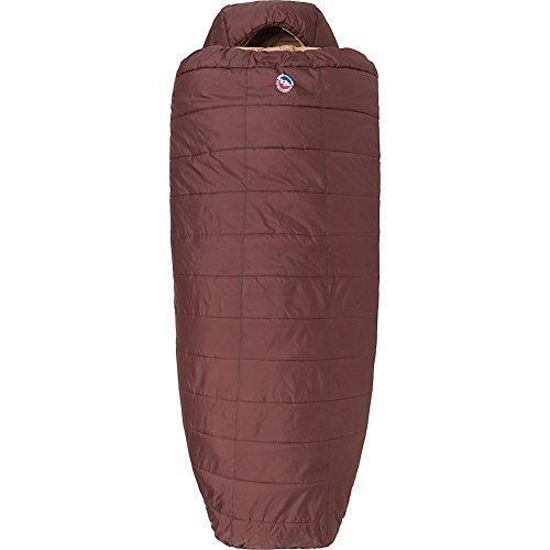 Big Agnes Elk Park -20 (Thermolite Extra) Sleeping Bag, Wide Long, Chocolate
