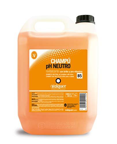Válquer Champú pH Neutro Revitalizante - 5 l (21109)