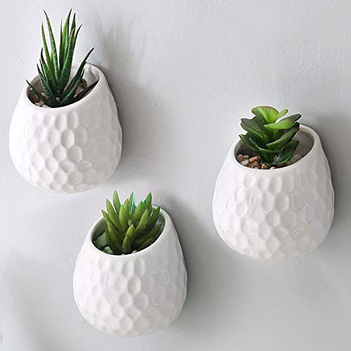 Golf ball wall-mounted mini planters