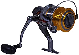 Best daiwa 4000 3bi Reviews