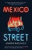 Mexico Street (3) (Chastity Riley)