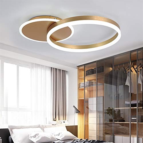 LED Ceiling Light Living Room Lamp With Remote Control Fashion Ceiling Lamp Minimalist Metal Acrylic Ring Designer Ceiling Lamp Lighting Bedroom Kitchen Dining Room Lights 2-Ring [Energy Class A++]