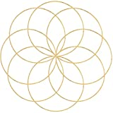 Outuxed 8pcs 10inch Metal Crafts Hoops Wreath Macrame Creations Ring for DIY Crafts Dream Catchers, Floral Macrame Hoop for Wedding Decor, Wall Hanging Craft,Gold