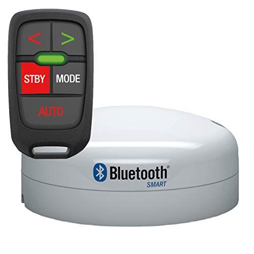 Lowrance White Standard 000-12316-001 Autopilot Remote & Station