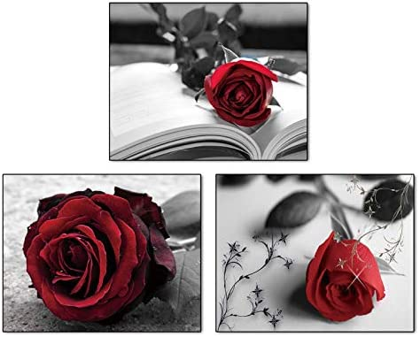 Modern Red Flowers Rose Art Painting Set of 3 8 X10 Canvas Picture for Bathroom Bedroom Living product image