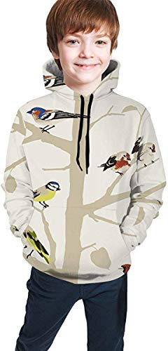 Jugend Kapuzenpullover Jungen Mädchen Teen Boys Girls 3D Schumacher Birds Pullover Hoodies Hooded Sweatshirts Tops Blouse with Pocket