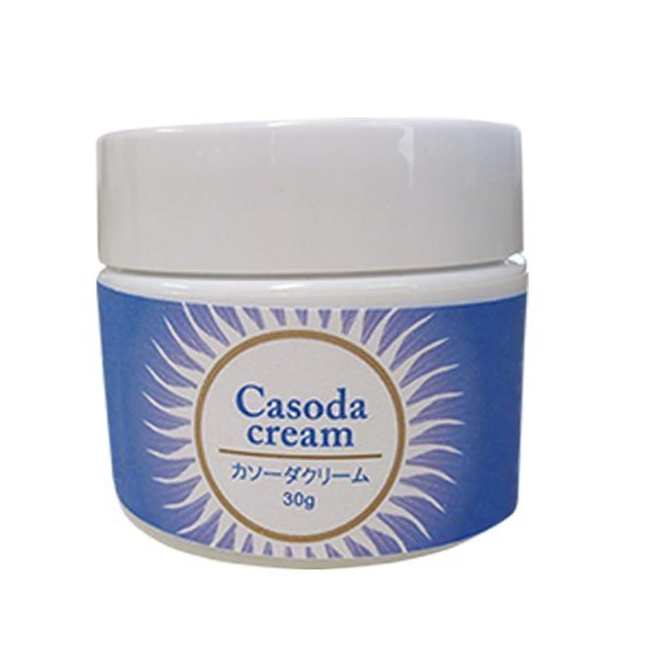 ファックスステレオタイプめまいcasoda カソーダ クリーム 30g