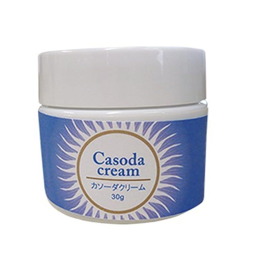 地質学スペア泥棒casoda カソーダ クリーム 30g
