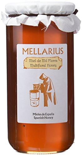 Miel de Mil Flores Mellarius 970 g