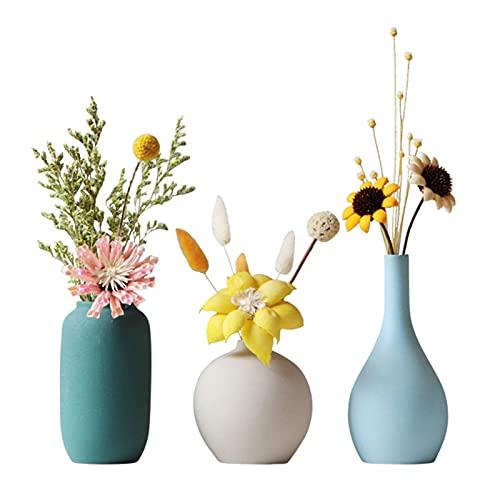 TDHLW Juego de 3 jarrones de cerámica pequeños con flores secas, jarrón pequeño para el hogar, sala de estar, decoración de eventos, color blanco
