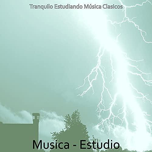 Tranquilo Estudiando Música Clasicos