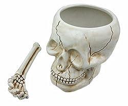 professional Pacific Giftware ArtMuseKitsMikash Cool Ceramic Cal Bowl with Bone Spoon