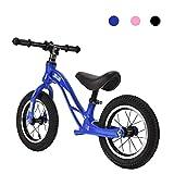 DFBGL Bicicleta de Equilibrio para niños de 12 Pulgadas, Bicicleta Liviana sin Pedal, con Asiento Ajustable, Juguetes para niños de 2 a 6 años, Regalo para niños y niñas, máximo 30 kg, v
