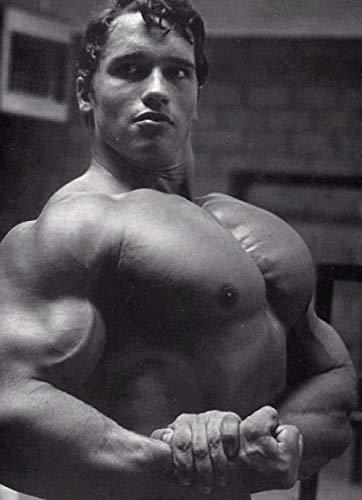 CNHNWJ Arnold Schwarzenegger Póster Múltiples Tamaño Gimnasio Decoracion Arnold Schwarzenegger Fitness Cuadros Impresión Hogar Culturismo Inspiracional Pared Arte Decoracion Lienzo