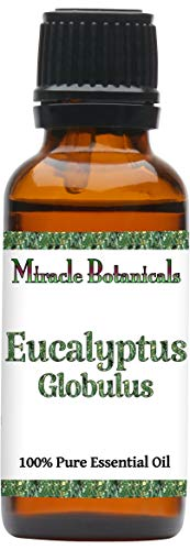 Miracle Botanicals Australian Eucalyptus Globulus Essential Oil - 100% Pure Eucalyptus Globulus - Therapeutic Grade - 30ml