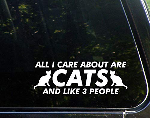 Diamond Graphics All I Care About are Cats and Like 3 People (8-3/4' x 3') Die Cut Decal Bumper Sticker for Windows, Cars, Trucks, Laptops, Etc.