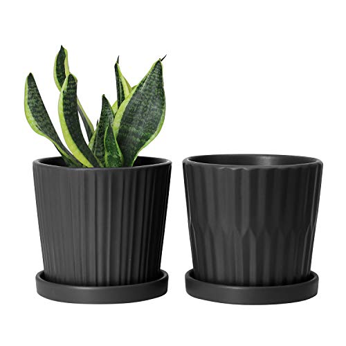 Greenaholics Black Plant Pots - 6 Inch Ceramic Flower Planters Indoor with Drainage and Attached Saucers for Orchid or Herbs Small Modern Round Pot, Set of 2