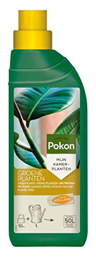 Pokon Grünpflanzen-Flüssigdünger, Dünger, Flüssig, Grünpflanzen im Zimmer, auf Balkon und Terrasse, 500 ml