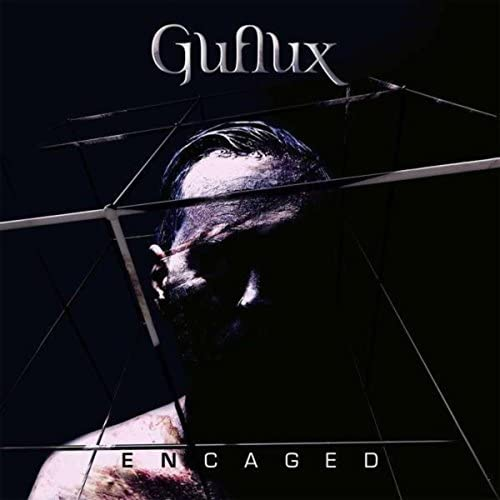 Guflux