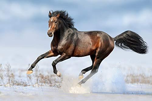 MAIYOUWENG Puzzel Für Erwachsene Klassische Puzzle 1000 Teile Lehrreiches Spielzeug Pferd Galoppiert Im Schnee Als Geburtstag Weihnachten Geschenk 29.5x19.7in(75x50cm)