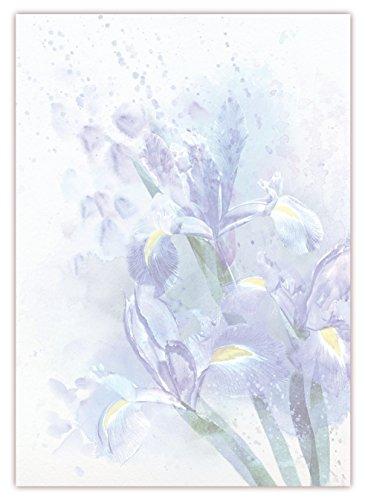 Motiv Briefpapier (Lilien-5036, DIN A4, 25 Blatt). Einseitig bedrucktes Briefpapier, sehr gut beschreibbar, Motivpapier für alle Drucker/Kopierer geeignet Motiv blaue Lilien Schwertlilien im Regen