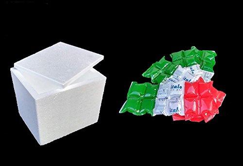 Piepschuim container voor frisse/bevroren BOX7 maat int. 35,2 x 35,2 x 33,5 + 1,7 kg synthetisch ijs