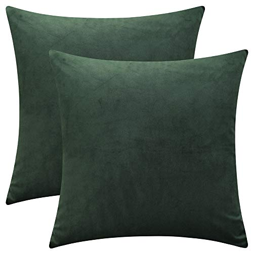 """Rythome Set of 2 Comfortable Throw Pillow Cover for Bedding, Decorative Accent Cushion Sham Case for Couch Sofa, Soft Solid Velvet with Zipper Hidden - 16""""x16"""", Dark Jungle Green"""