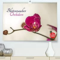 Bluetenzauber Orchideen (Premium, hochwertiger DIN A2 Wandkalender 2022, Kunstdruck in Hochglanz): Lassen Sie sich von zauberhaften Orchideenblueten durchs Jahr begleiten. (Geburtstagskalender, 14 Seiten )