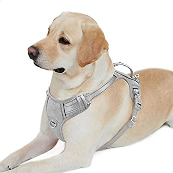BARKBAY No Pull Dog Harness Front Clip Heavy Duty Reflective Easy Control Handle for Large Dog Walking with ID tag Pocket Grey,L