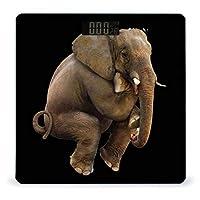象-png-画像-ファイル LCDディスプレイ付き高精度スマートフィットネススケール体重デジタルバスルームボディスケール