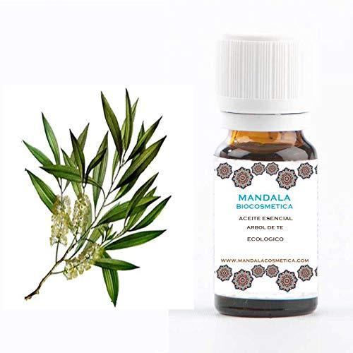 ACEITE ESENCIAL ARBOL DE TE (Melaleuca alternifolia) BIO (30)