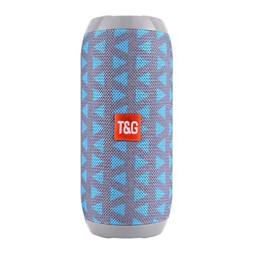 ZUZU Bluetooth Portable Stereo Speaker-Echo (2. Generation)-Smart Lautsprecher mit Alexa-blau,Gray