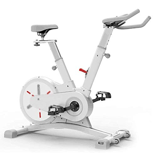 WJFXJQ Bicicleta de Ejercicios Ciclismo Indoor Bike Cinturón Impulsado Resistencia magnética Bicicleta estacionaria del Volante Cubierta Trasera de Bicicletas 100 kg Teniendo