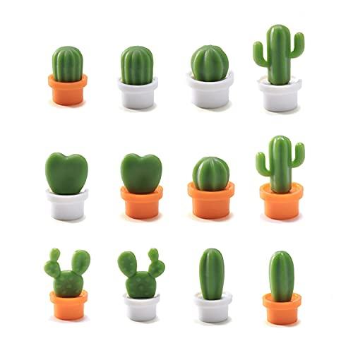 SLKIJDHFB - Adesivi per frigorifero (12 pezzi), simpatici adesivi per frigorifero con cactus succulenti, magneti per frigorifero 3D Mini, adatti per frigorifero/lavagna, casa, ufficio, insegnamento