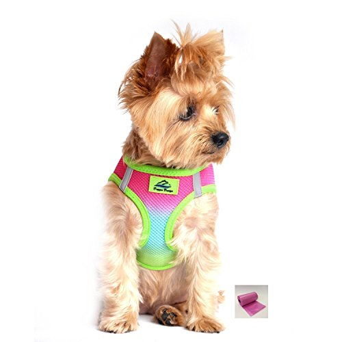 "American River Rainbow Ombre Ultra Choke Free Harness Vest – Dog Sizes XS thru 3XL (Large - Chest 19""-21"", Rainbow)"