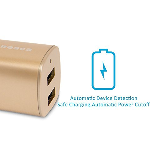 Tranesca Dual USB Port Travel Wall Charger with Foldable Plug for iPhone XS/XR/X/8/7/6S/Plus; Samsung Galaxy S8/S7/S6/S5 Edge, LG, HTC, Moto, Kindle and More-Gold