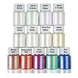 Yushu - Polvo de resina Aurora de 13 colores, kit de pigmentos...
