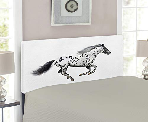 Lunarable Horse Headboard, Powerful Appaloosa Stallion Graceful Royal Pure Blood Champion Equine Print, Upholstered Decorative Metal Bed Headboard with Memory Foam, Twin Size, Black and White