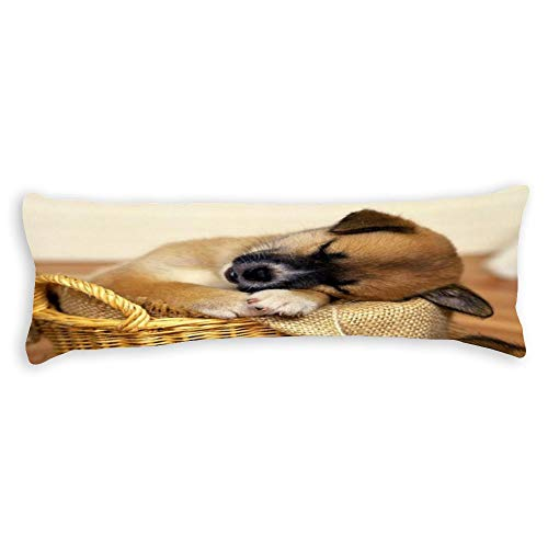 Perfecone Home Improvement - Funda de almohada de algodón para cama doble, diseño de cachorro durmiendo en una cesta de mimbre, sofá y coche, 1 paquete de 30 cm x 30 cm