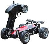 ZHANGL Coche de juguete for nios 2.4G inalmbrica coche de control remoto fuera de carretera modelo de coche deportivo creativa frmula Drift Racing funcin de ajuste automtico de la frecuencia enfr