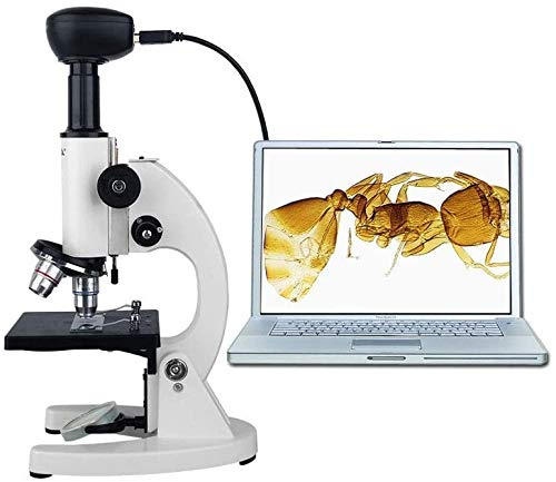 HYCQ Microscopio monocular Niño Profesional Estudiante de Schungs microscopio, 40X-640X, de precisión de Vidrio para microscopio óptico con lámpara Mini microscopio,1
