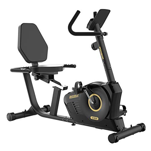 pooboo Recumbent Exercise Bike, Magnetic Cycling Bike Stationary Indoor Exercise Bike with Padded and Adjustable Seat LCD Display for Home Cardio Workout