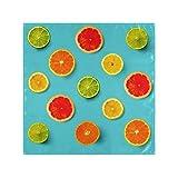 Satin Napkins Set of 6, Creative Layout Made Lemon Lime Orange,Square Printed Party & Dinner Cloth Napkins,20' X 20'