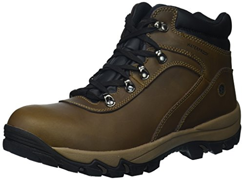 Northside Men's Apex Mid Hiking Boot, Brown, 13 2E US